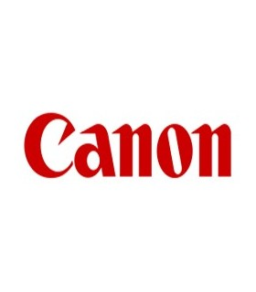 Cartuccia Canon PFI-320Y -300ml